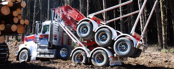 Maxvikterna på lastbilarna varierar stort mellan olika stater. I det närmaste all timmer som fraktas på land går med lastbil.