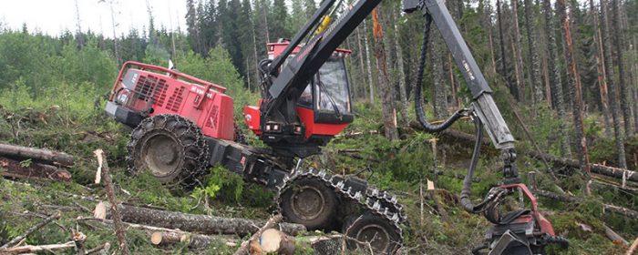 Ny mässa för skogsnäringen