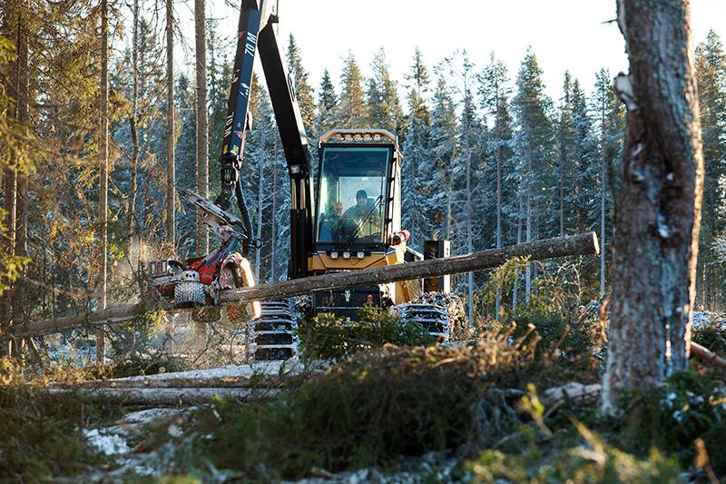 Deltagarna under skogsdagen fick möjlighet att se den nya sågenheten i full verksamhet.