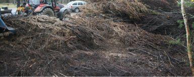 Södra utvecklar hanteringen av skogsbränsle