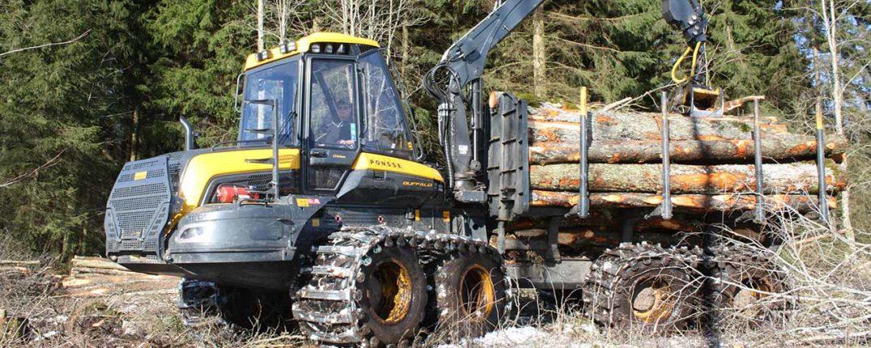 LÅAK Skog utför främst föryngringsarbeten och röjningar i skog inom Ulricehamns kommungräns med Södra som uppdragsgivare.