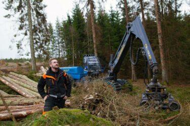 Emil har massor av jobb i skogen