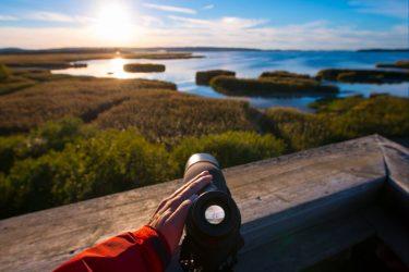 Bilister har korat Sveriges vackraste rutt i stor enkät