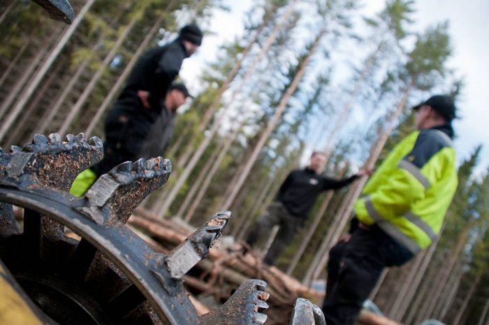 Tydligare spelregler för affärer inom skogsentreprenad